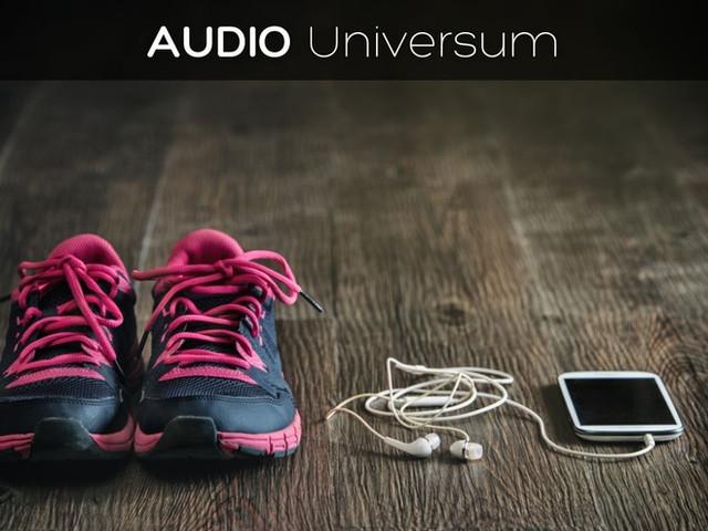 Audio Universum
