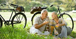 Romantic Picnic Couple