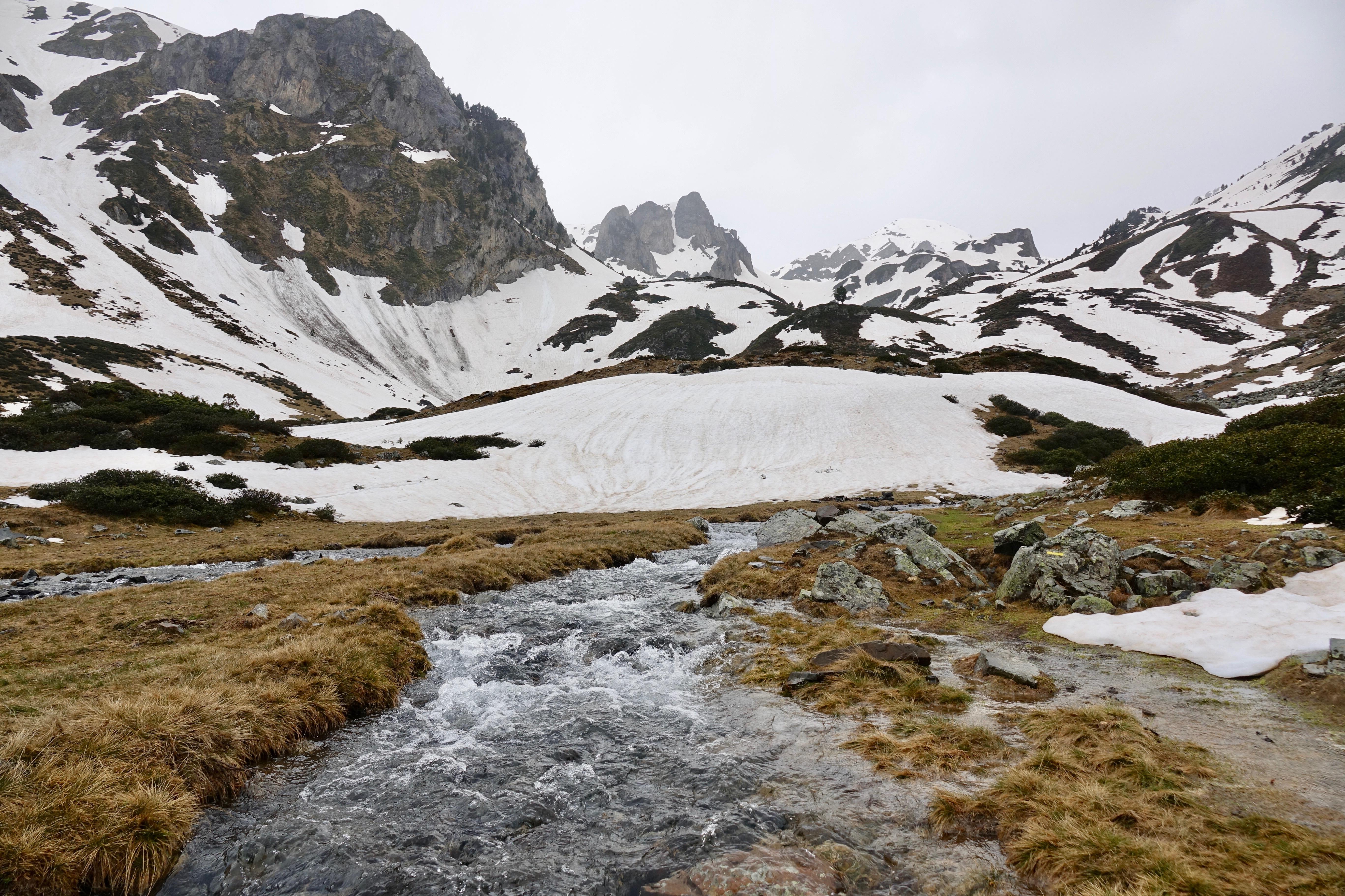 La rivière le Lavedan
