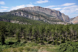 Sierra de Montgay