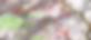 randonnée et ascension de la cime des Babarottes et la cime de Fourchas. carte IGN 1/25