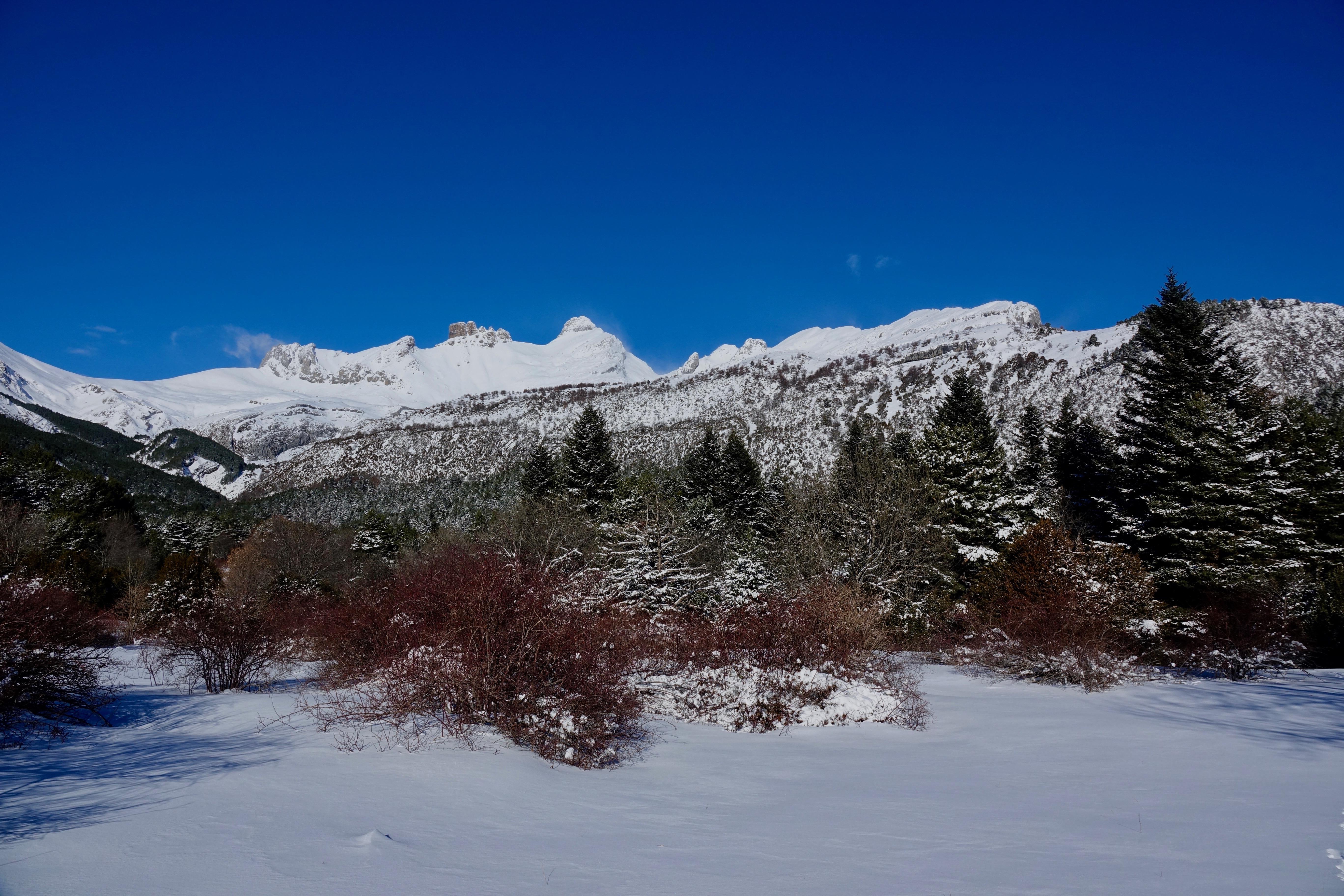 Plateau de Gabardito