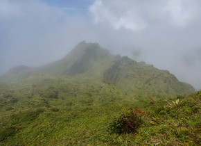Montagne Pelée (Martinique)