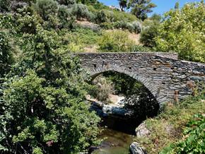 Gialia-Apikia (Andros-Cyclades)