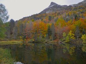 Lac de l'ours (64)