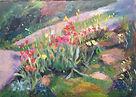 Tulipes de mon jardin