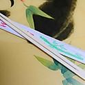 Chopsticks (1 Pair)
