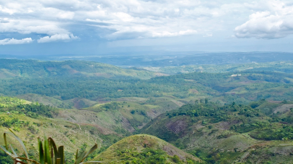 VIEW from Haiti's Blue Pine Forest, the cradle of Haitian specialty coffee.