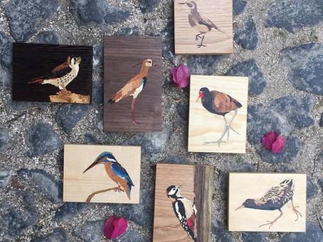 Aves do mundo, uni-vos! / Oiseaux du monde, unissez-vous!