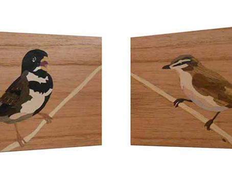 Quatro novos pássaros brasileiros