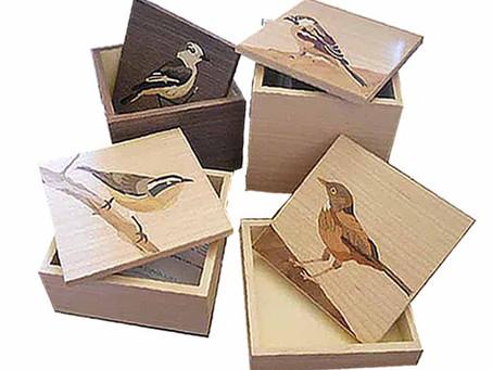 Caixa pássaros brasileiros