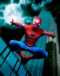 Spider-Hero