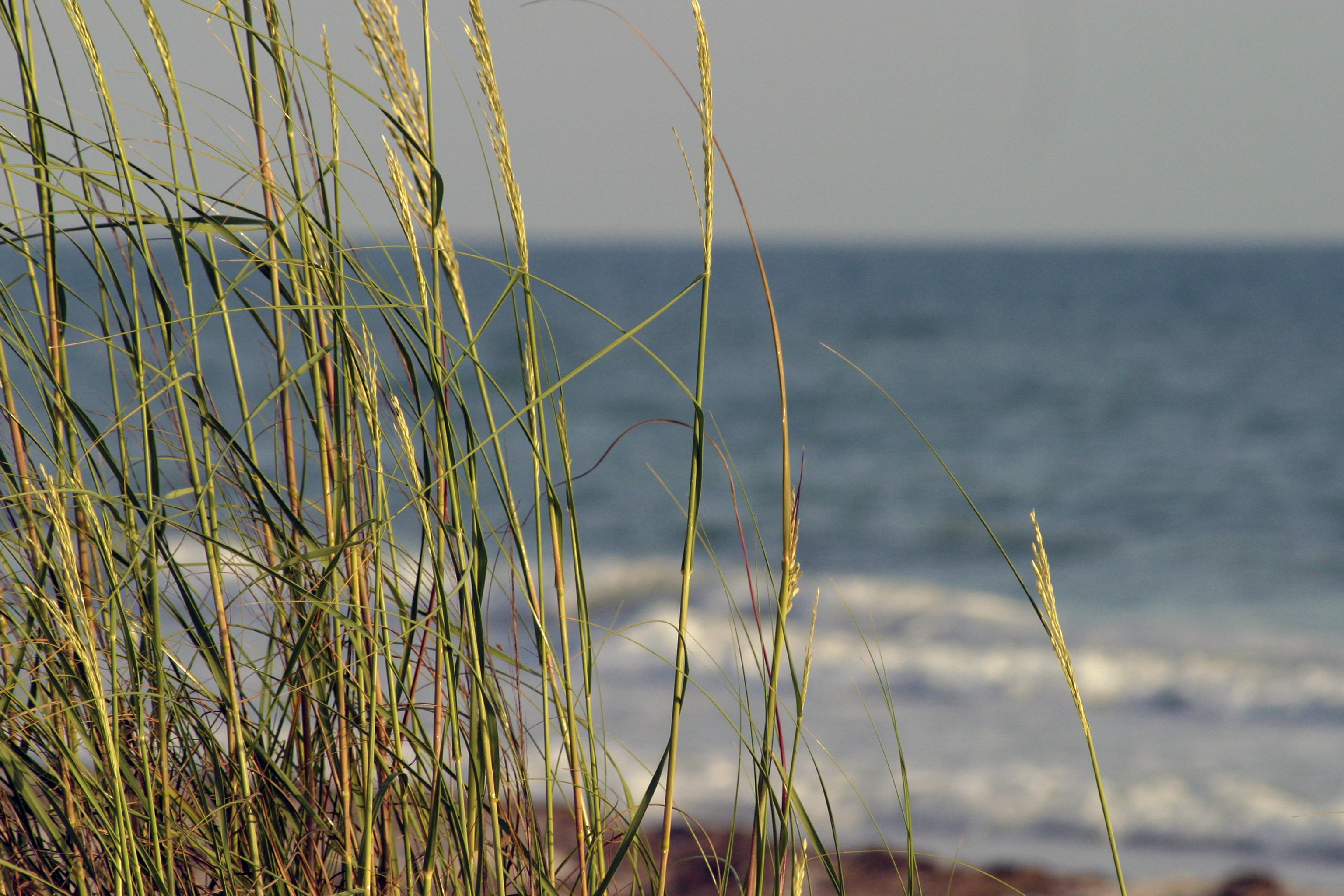 Natural beaches