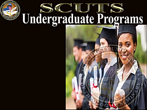 Undergraduate PRograms Banner - Transpar