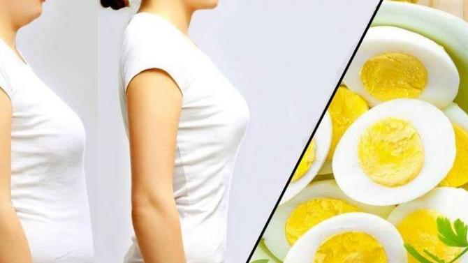 O poder dos ovos na dieta