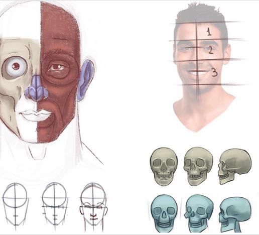 cabeças e expressões.png