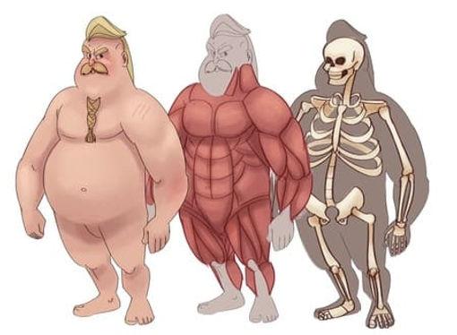 2  biotipo gordo.jpg