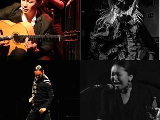 【終了】メルカド1周年記念フラメンコショー!