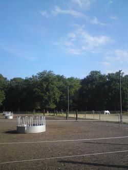 Paddock Dützhof