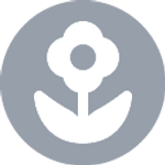 flower (2).png