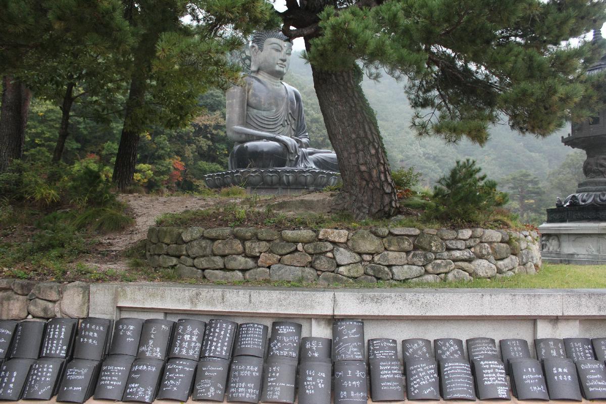 205 - South Korea - Eric Pignolo.JPG