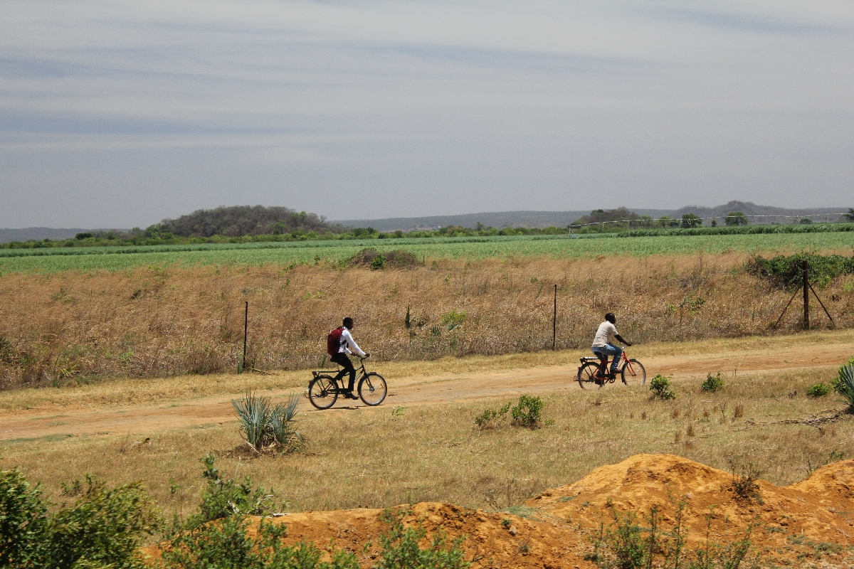 187 - Eric Pignolo - Southern Africa 201