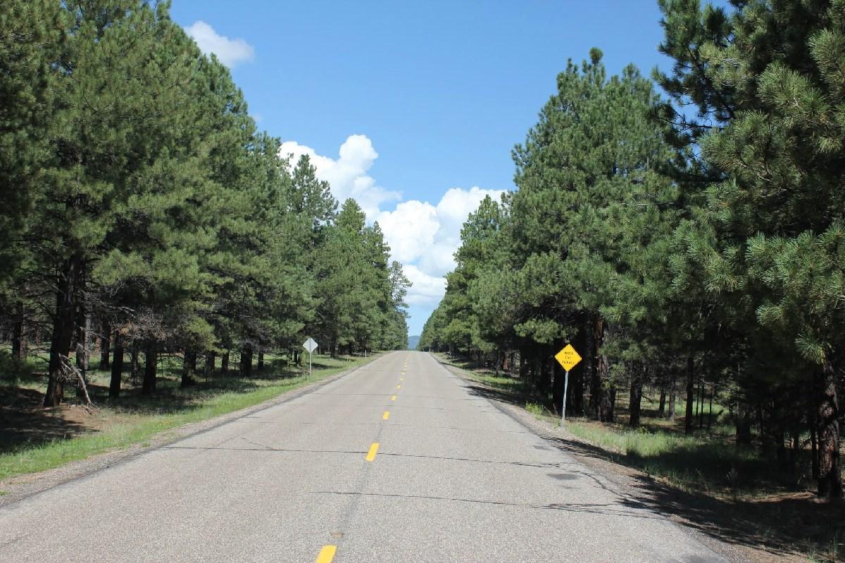 223 - Route 66 - USA  - Eric Pignolo.JPG