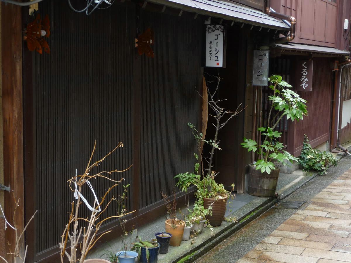 152 - Japanese blossom - Eric Pignolo.JPG