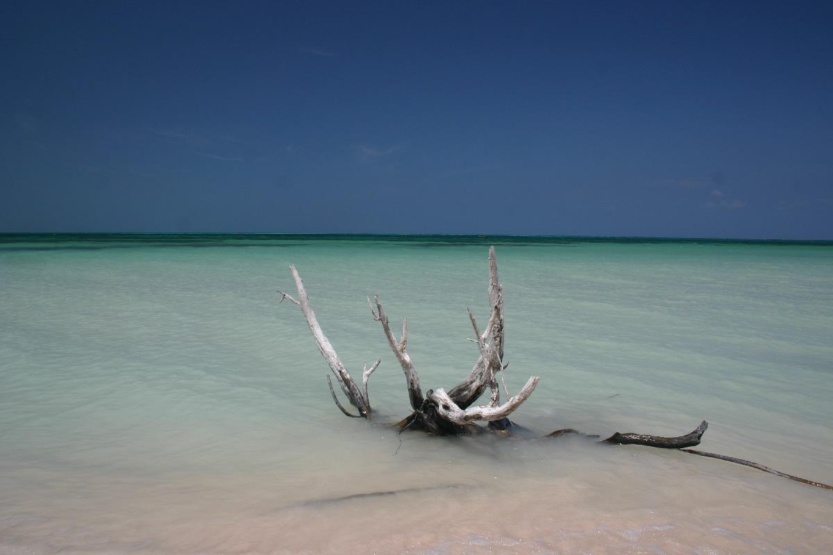 037 - Cuba - Eric Pignolo.jpg