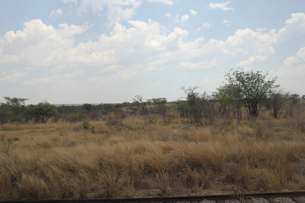 075 - Eric Pignolo - Southern Africa 201