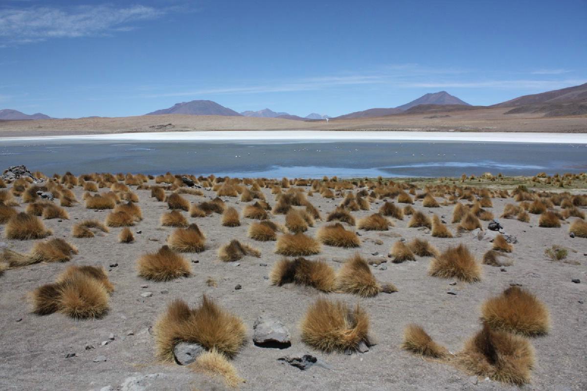 247 - Bolivia - Eric Pignolo.JPG