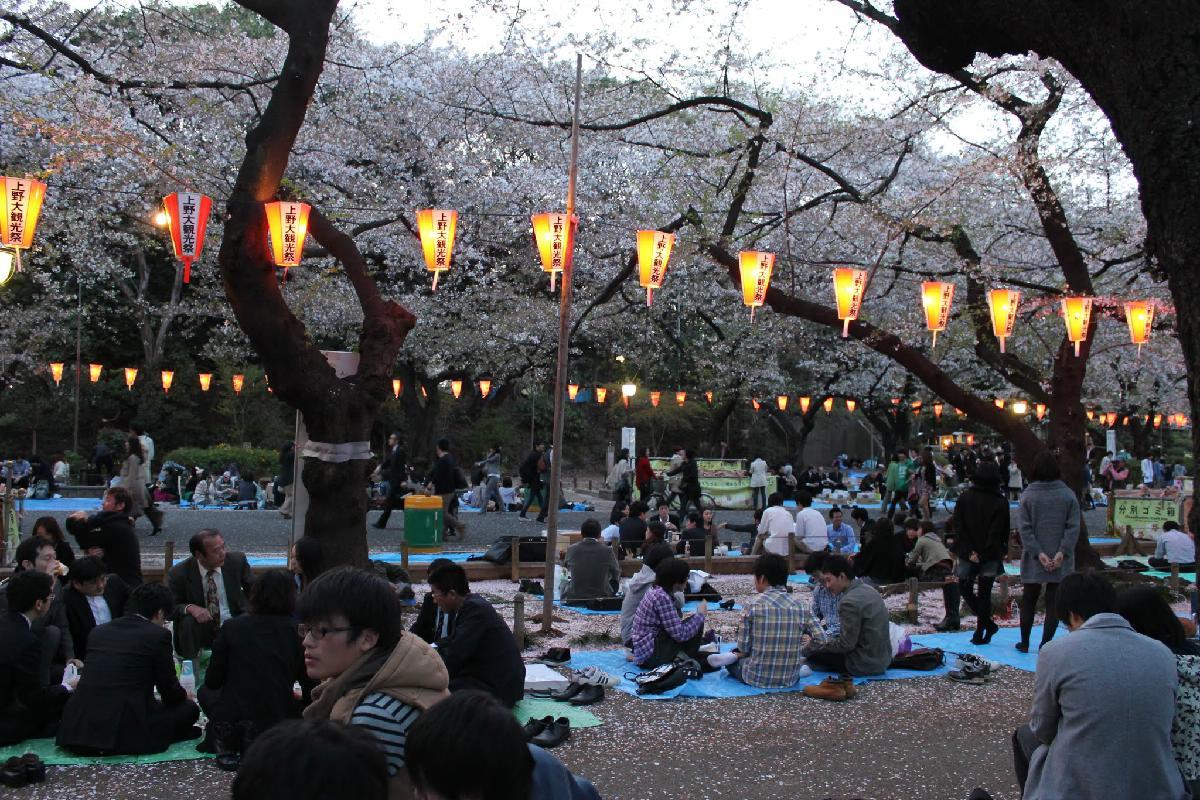 143 - Japanese blossom - Eric Pignolo.JPG