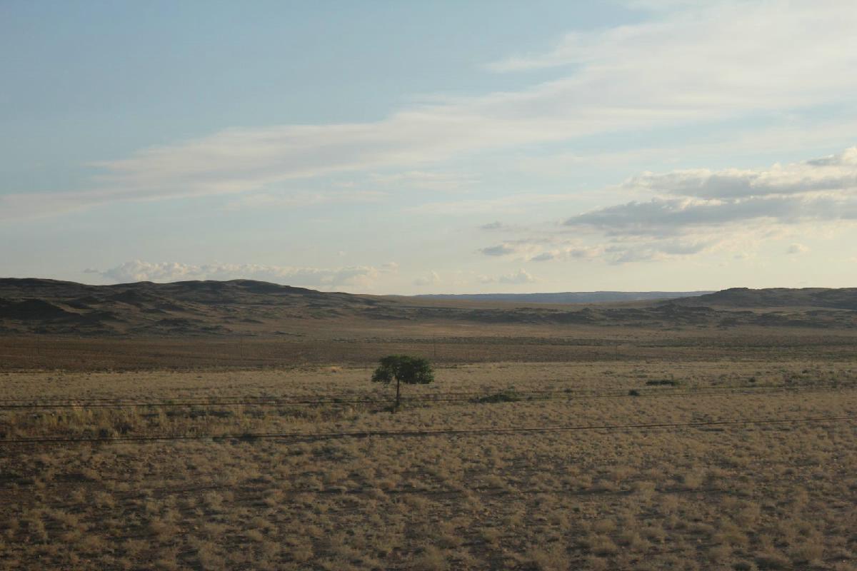 167 - Trans Mongolian - Eric Pignolo.JPG