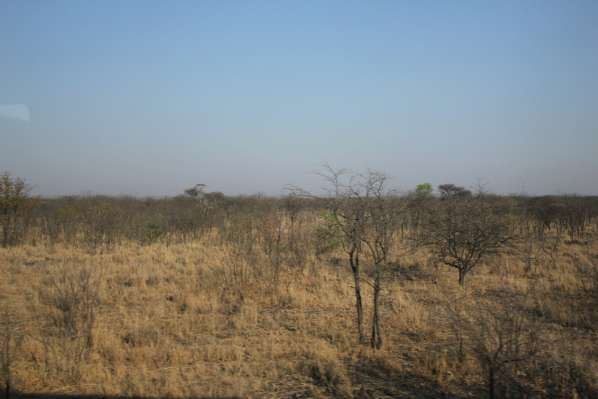 072 - Eric Pignolo - Southern Africa 201