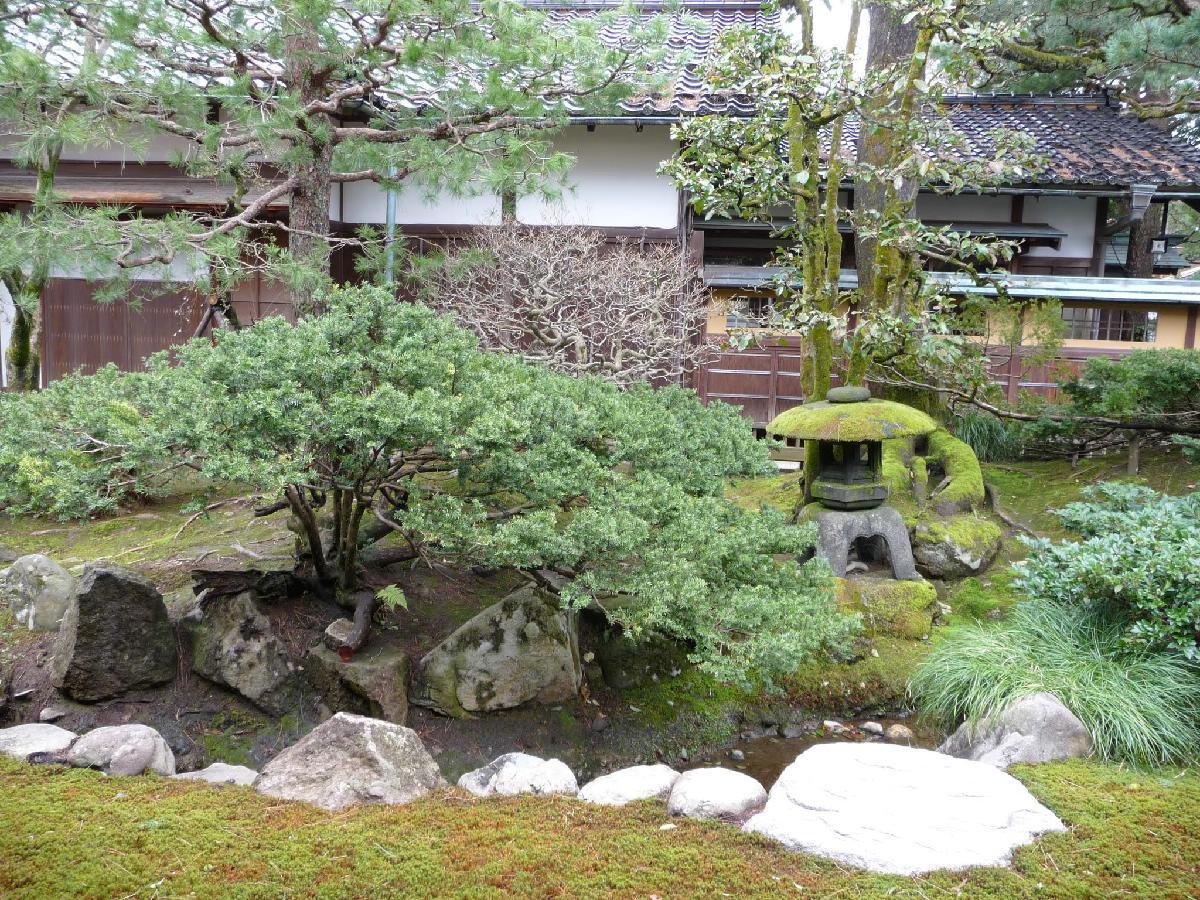 159 - Japanese blossom - Eric Pignolo.JPG