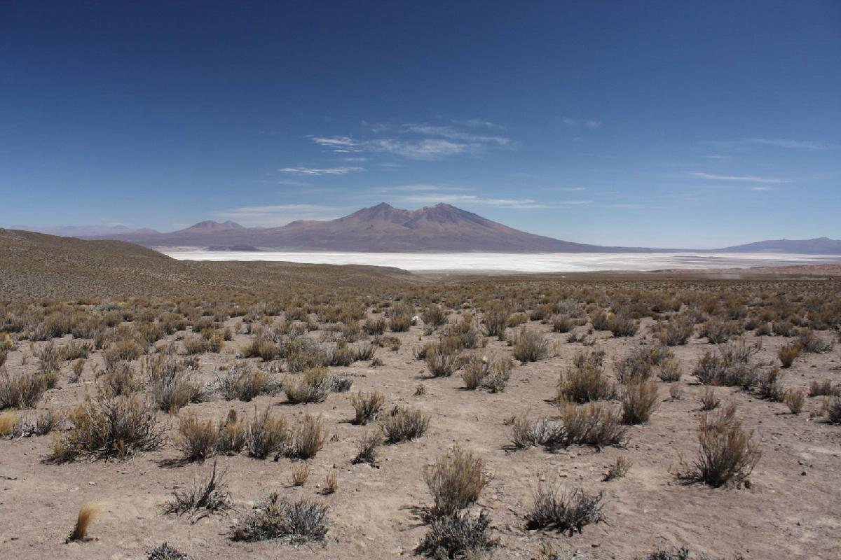 240 - Bolivia - Eric Pignolo.JPG