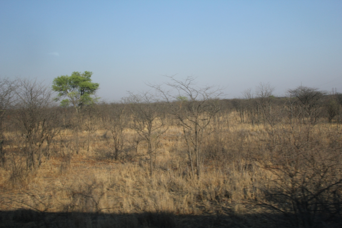 073 - Eric Pignolo - Southern Africa 201