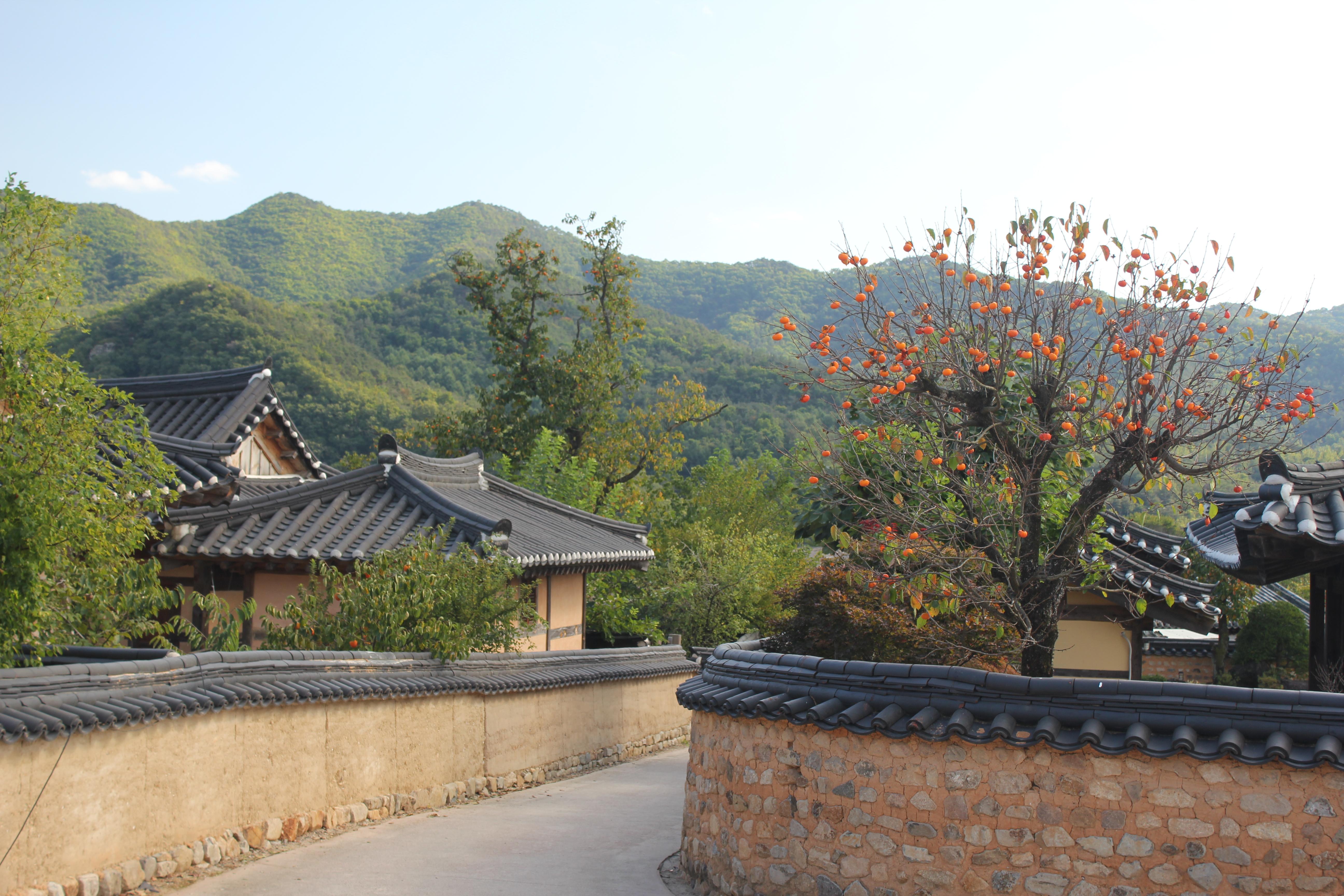 169 - South Korea - Eric Pignolo.JPG