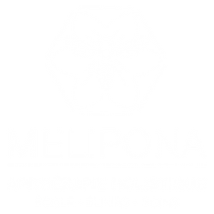 Melipona_blanc.png