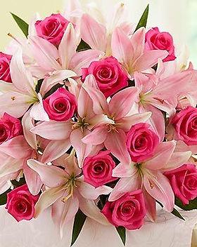 lily rose.jpg