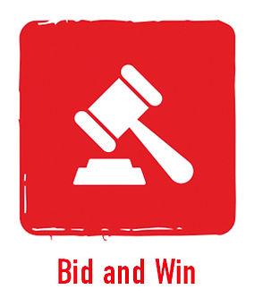 Bid and Win Button.jpg