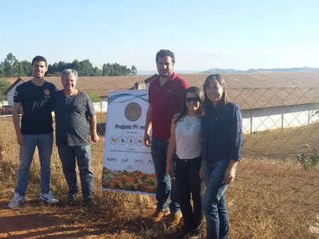 Integrantes do Projeto Pomar realizam visita à propriedade com grande potencial para a fruticultura
