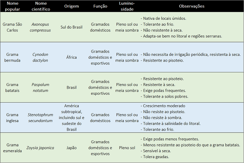Planilha comparativa com características de cada tipo de grama