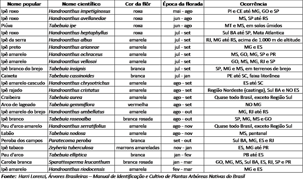 Tabela com 23 espécies de ipês