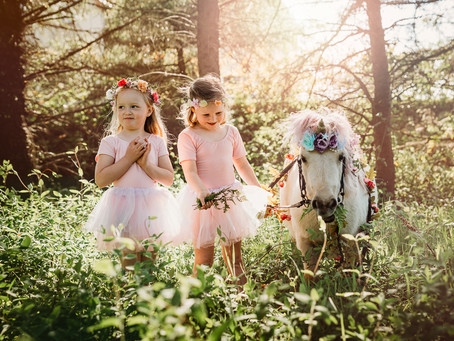 The Magical Unicorn, Children's photography, Meath