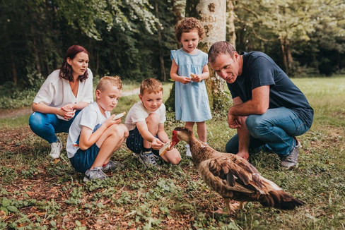 family and duck