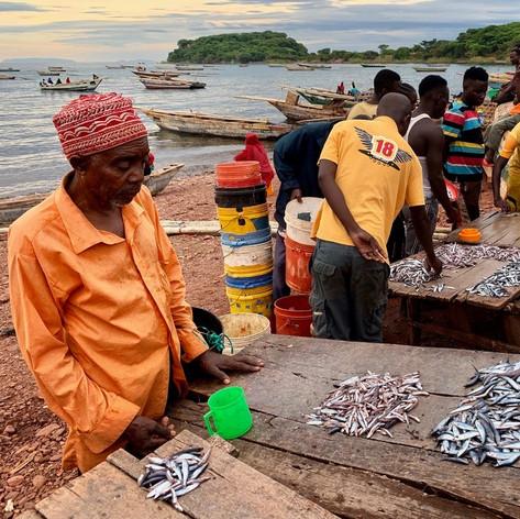 Vendedor de pescado en Katonga en Kigoma, Tanzania