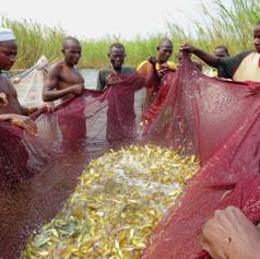 Pescadores en Ujiji, Kigoma, Tanzania