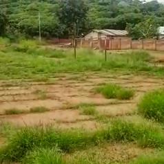 Il campo dove giocano i ragazzi