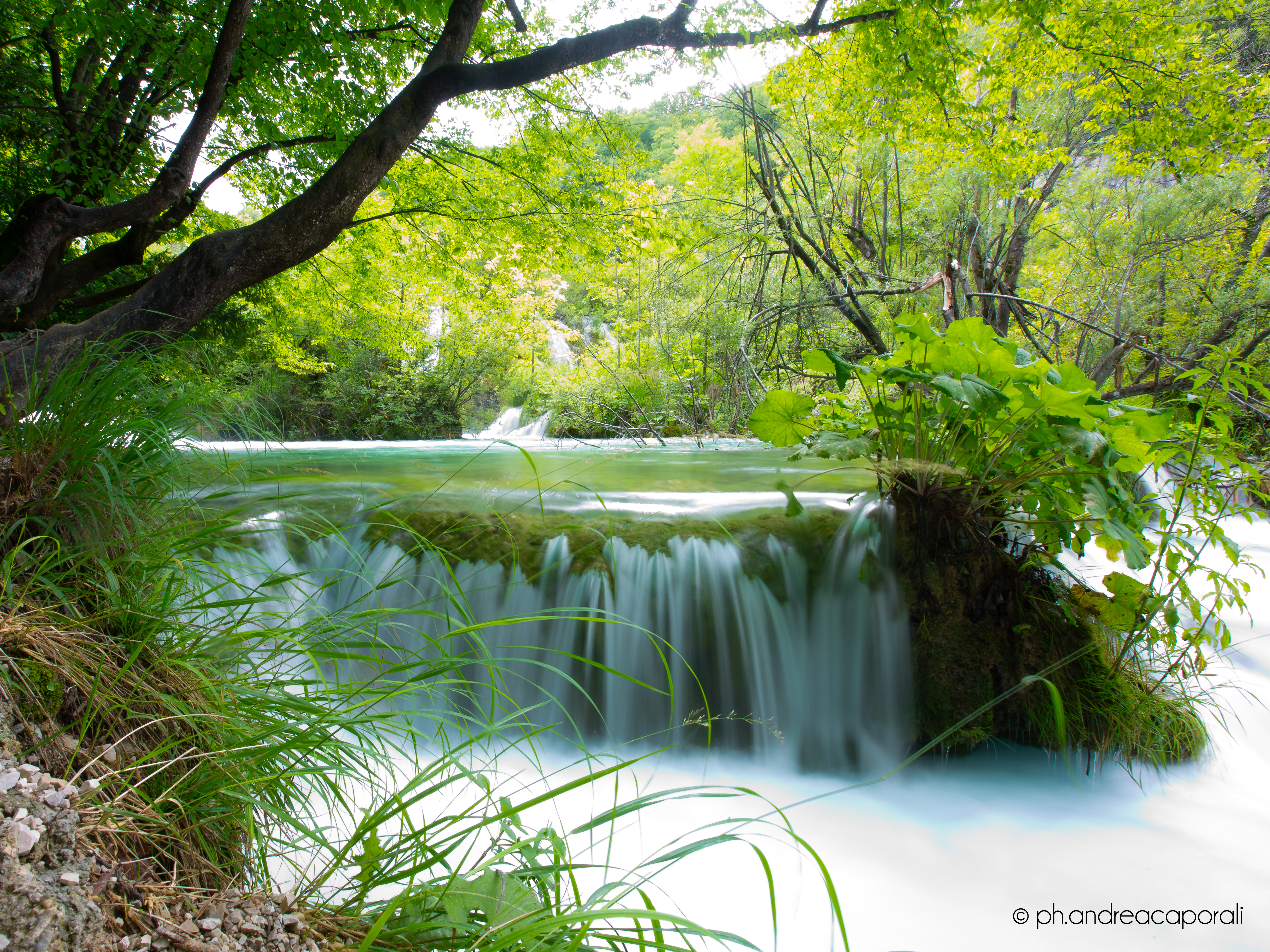 Croazia 2014 - Plitvice
